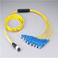40G Sinelmode Female MPO- SC Fiber Optic Patch Cord