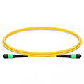 MTP Female 12 Fibers Type B LSZH OS2 Elite Trunk Cable
