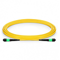 MTP Female 12 Fibers Type A LSZH OS2 Elite Trunk Cable