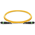 MTP Female 12 Fibers Type B LSZH OS2 Elite HD Trunk Cable